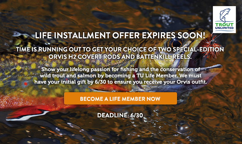 Life Installment Offer Expires Soon!
